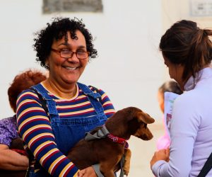 Hay Decreto Ley de Bienestar Animal en Cuba: El Ministerio de la Agricultura cumplió lo prometido a los animalistas